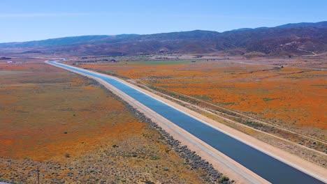 Antena-Del-Acueducto-De-California-Rodeado-Por-Campos-De-Flores-Silvestres-Y-Amapolas-Del-Desierto-De-Mojave-1