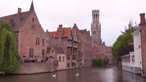 Beautiful-canal-swans-and-the-Belfort-Van-Brugge-Bruges-belfry-bell-tower-in-Belgium