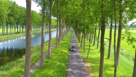 Aerial-through-treetops-of-a-car-driving-along-a-canal-in-Belgium-Holland-Netherlands-or-Europe
