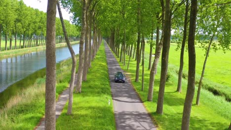 Aerial-through-treetops-of-a-car-driving-along-a-canal-in-Belgium-Holland-Netherlands-or-Europe-2