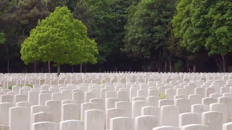 Errichtung-Von-Erschossenen-Grabsteinen-Des-Etaples-Frankreich-Weltkriegsfriedhof-Militärfriedhof-Und-Grabsteine-Der-Soldaten-2