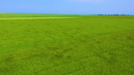 Aerial-of-wind-blowing-over-green-farm-fields-of-Normandy-France