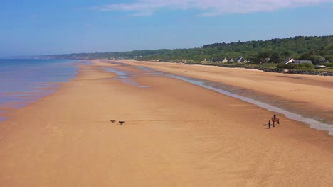 Aerial-over-dogs-running-and-horse-and-rider-on-Omaha-Beach-Normandy-France-site-of-World-War-two-D-Day-allied-invasion