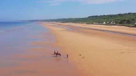 Antenne-über-Hunde-Laufen-Und-Pferd-Und-Reiter-Auf-Omaha-Beach-Normandie-Frankreich-Website-Des-Zweiten-Weltkriegs-D-Day-Invasion-Der-Alliierten-2