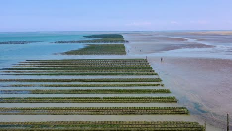 Aerial-over-French-mussel-farm-at-Utah-Beach-Normandy-France