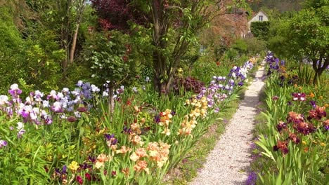 Flowers-grow-in-the-garden-of-Claude-Monet-in-Giverny-France-5