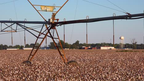 A-water-irrigation-system-in-cotton-growing-in-a-field-in-the-Mississippi-Río-Delta-region-with-small-town-distant
