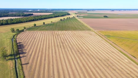 Aerial-over-vast-cotton-fields-along-the-Mississippi-River-in-the-deep-South