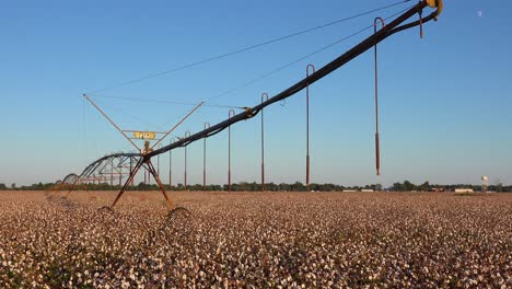 Nice-view-of-farm-water-irrigation-system-in-agricultural-cotton-growing-in-a-field-in-the-Mississippi-Río-Delta-region-1