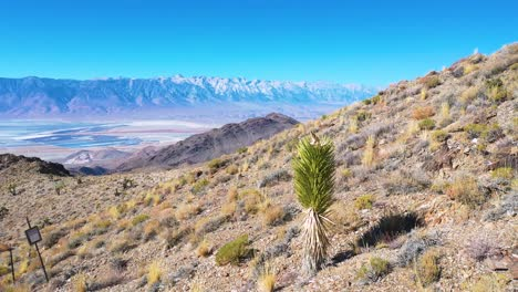 Aerial-of-the-vast-Owens-Valley-region-reveals-the-Eastern-Sierras-of-California-and-Mt-Whitney-in-distance-3