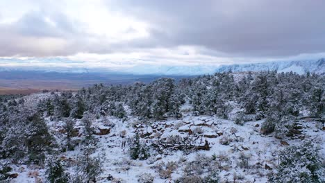 2020-beautiful-aerial-over-frozen-trees-landscape-and-snow-covered-mountain-in-Eastern-Sierras-near-Bishop-California