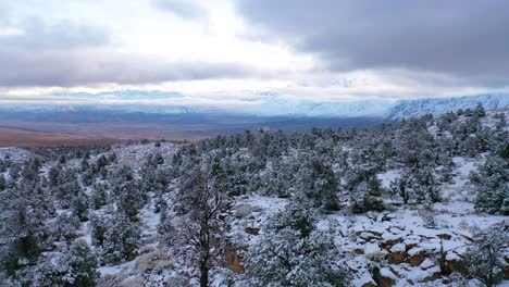 2020-beautiful-aerial-over-frozen-trees-landscape-and-snow-covered-mountain-in-Eastern-Sierras-near-Bishop-California-1