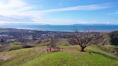 2020---aerial-over-the-pacific-coastal-green-hills-and-mountains-behind-Ventura-California-including-Two-Trees-landmark-1