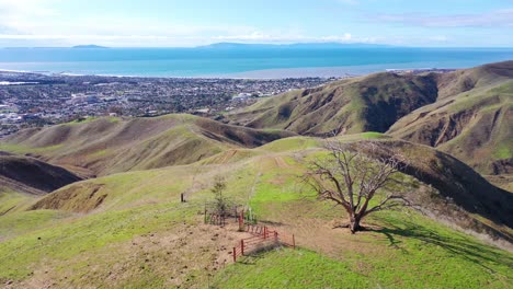 2020---aerial-over-the-pacific-coastal-green-hills-and-mountains-behind-Ventura-California-including-Two-Trees-landmark-2