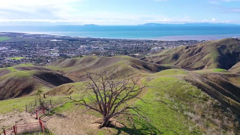 2020---aerial-over-the-pacific-coastal-green-hills-and-mountains-behind-Ventura-California-including-Two-Trees-landmark-3