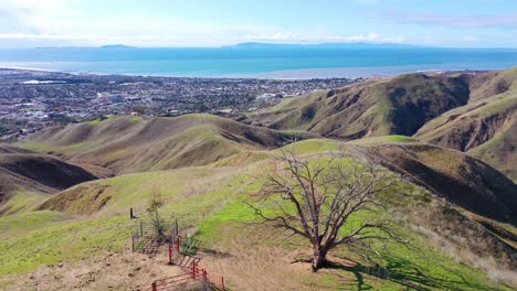 2020---vista-aérea-over-the-pacific-coastal-green-hills-and-mountains-behind-Ventura-California-including-Two-Trees-landmark-5