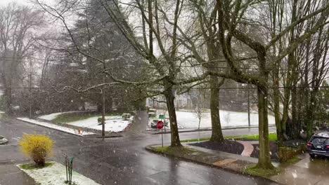 Heavy-winter-snow-falls-in-a-traditional-American-neighborhood-in-Portland-Oregon-1