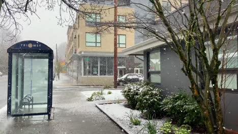 La-Intensa-Nieve-Del-Invierno-Cae-En-Un-Barrio-Tradicional-Estadounidense-Y-Negocios-En-Portland-Oregón