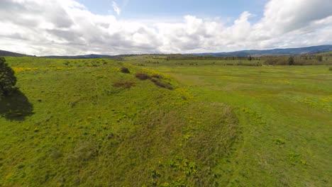 Una-Vista-Aérea-De-Los-Pastizales-En-El-Noroeste-Del-Pacífico
