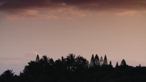 Sunset-glow-behind-a-generic-distant-forest