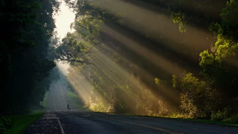 Sun-rays-shine-down-beautifully-onto-a-highway-or-road