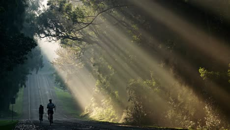 Sun-rays-shine-down-beautifully-onto-a-highway-or-road-as-bicycles-pass