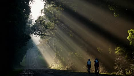 Sun-rays-shine-down-beautifully-onto-a-highway-or-road-1