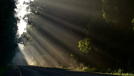 Sun-rays-shine-down-beautifully-onto-a-highway-or-road-2
