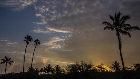 Clouds-move-in-time-lapse-over-palms-trees-on-the-island-of-Hawaii