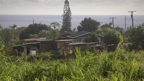 Casas-Antiguas-En-Anahola-Kauai-Hawaii