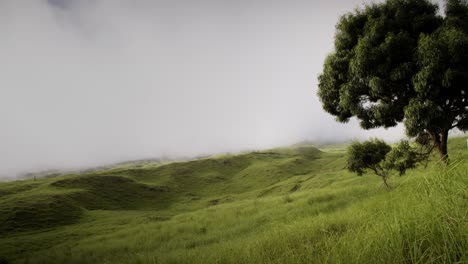 Lapso-De-Tiempo-De-Nubes-Y-Niebla-Moviéndose-Sobre-Campos-Verdes-En-La-Isla-De-Molokai-Hawaii