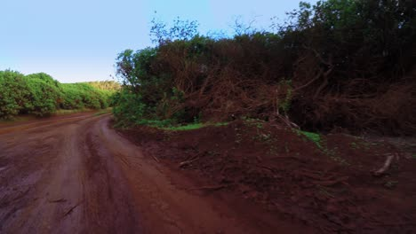 POV-shot-driving-on-a-red-dirt-road-on-the-island-of-Lanai-in-Hawaii