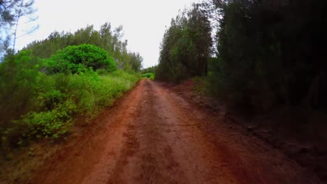 Pov-Shot-Conduciendo-Por-Un-Camino-De-Tierra-Roja-En-La-Isla-De-Lanai-En-Hawaii-1