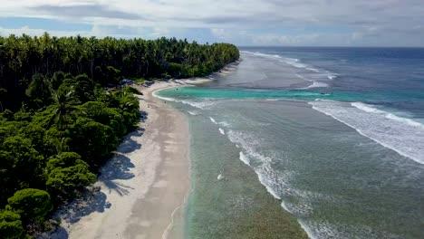 Endless-palm-or-coconut-tree-groves-and-beautiful-beaches-on-the-island-paradise-of-Teraina-Island-Kiribati-Micronesia-Pacific-Islands-1