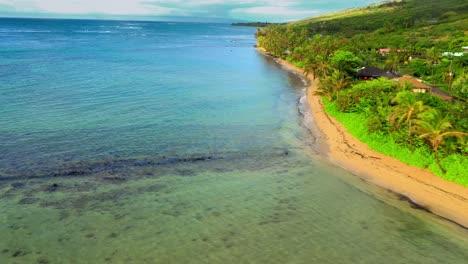 Antena-Sobre-El-Estanque-De-Peces-De-Kahina-Pohaku-A-Lo-Largo-De-La-Costa-De-Maui-Hawaii