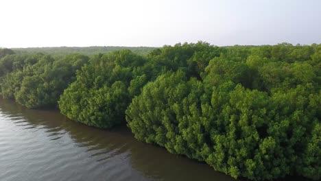 Aerial-shots-along-a-riover-estuary-in-El-Paradon-Guatemala