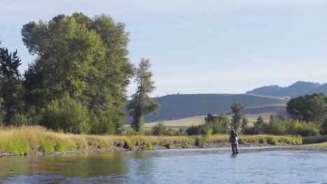 Un-Pescador-Con-Mosca-En-Una-Hermosa-Mañana-De-Verano-Arroja-Truchas-En-Un-Río-Montana