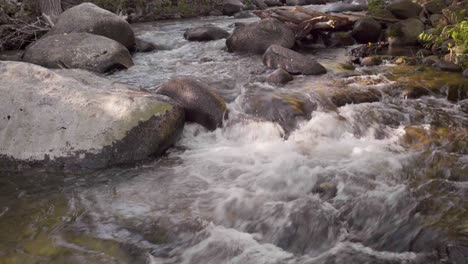 A-clear-cold-rushing-Montana-stream-in-early-morning-light