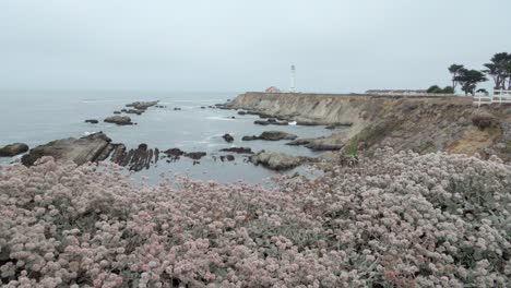 Beautiful-dolly-shot-of-wildflowers-and-wave-breaking-on-the-shore-below-the-historic-Point-Arena-Lighthouse-California
