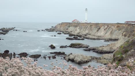 Beautiful-dolly-shot-of-wildflowers-and-wave-breaking-on-the-shore-below-the-historic-Point-Arena-Lighthouse-California-2