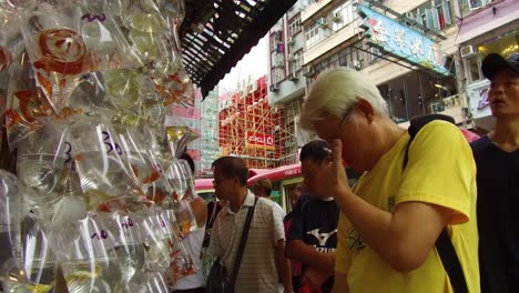 Exotic-fish-are-offered-for-sale-in-plastic-bags-on-a-wall-in-a-market-shop-in-Hong-Kong-China-2