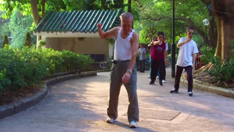 Chinese-seniors-practice-tai-chi-in-a-park-in-the-early-morning-in-Hong-Kong-China-1