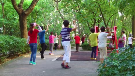 Chinese-seniors-practice-tai-chi-in-a-park-in-the-early-morning-in-Hong-Kong-China-3