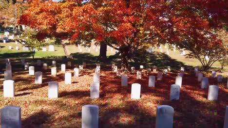 Disparo-De-Movimiento-Lento-A-Lo-Largo-De-Las-Tumbas-En-El-Cementerio-Nacional-De-Arlington-Washington-DC-Con-Colores-De-Otoño