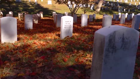Slow-Moving-Pan-Beside-Grave-Sites-In-Arlington-National-Cemetery-Washington-Dc-With-Fall-Colors