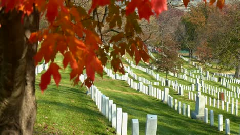 Establishing-Grave-Sites-In-Arlington-National-Cemetery-Washington-Dc-With-Fall-Colors
