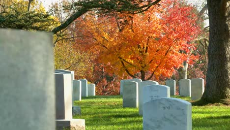Establishing-Grave-Sites-In-Arlington-National-Cemetery-Washington-Dc-With-Fall-Colors-1