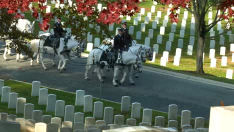 A-Military-Funeral-With-Horsedrawn-Coffin-In-Arlington-National-Cemetery-Washington-Dc-With-Fall-Colors