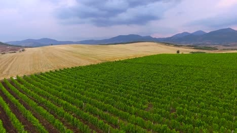 Vista-Aérea-over-cultivated-farm-fields-in-Eastern-Europe-2