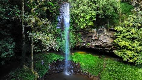 Establecimiento-De-Tiro-De-Crystal-Shower-Cae-En-Dorrigo-Nueva-Gales-Del-Sur-Australia